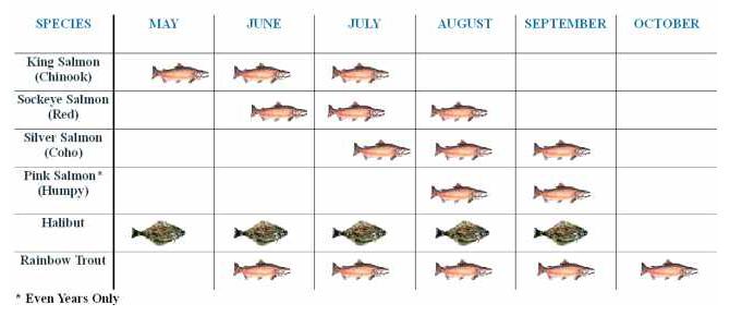 Kenai Fishing Guide Rates and Run Timing for Kenai River Alaska